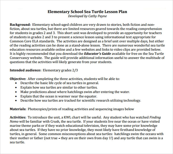elementary school sea turtle lesson plan