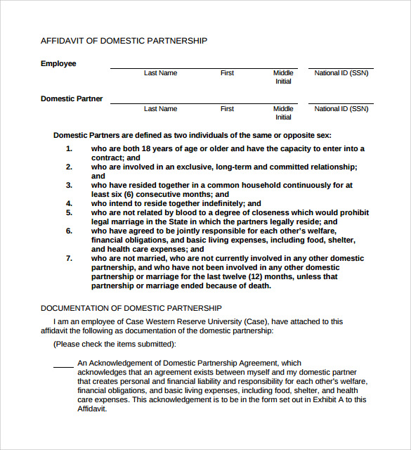 Domestic Partnership Agreement 11 Download Free