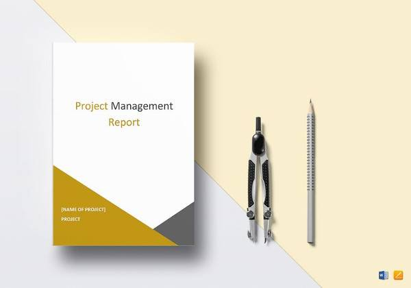 printable project management report template