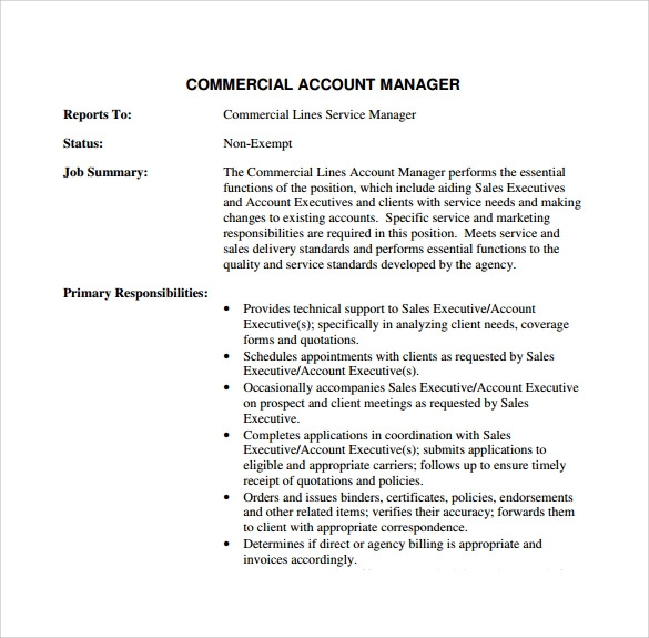 Sample Account Manager Resume 12 Download Free Documents in PDF – Account Manager Resumes