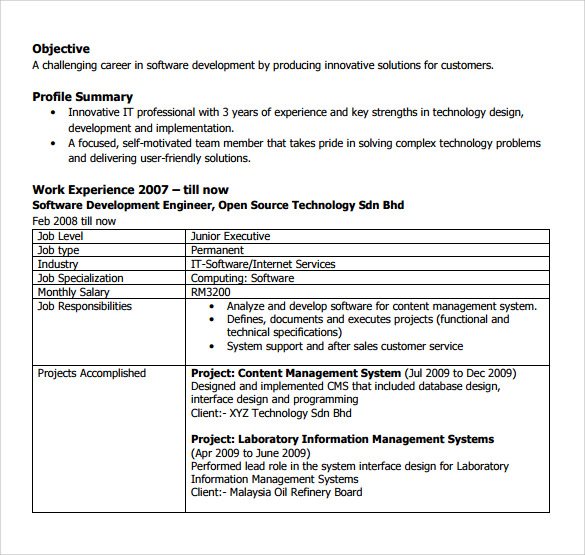 sample software developer resume 10 free documents