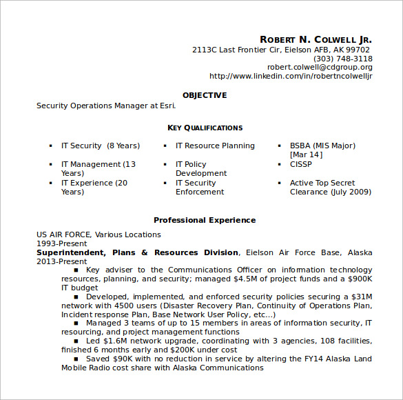 Sample Security Resume    Download Free Documents In Pdf Word