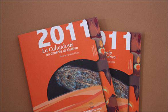 brochure marine harvest chile