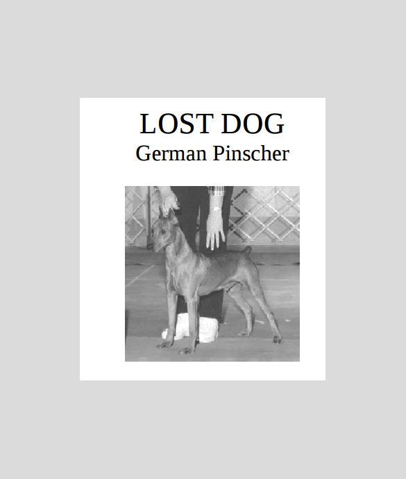 lost dog flyer maker %ef%bb%bf