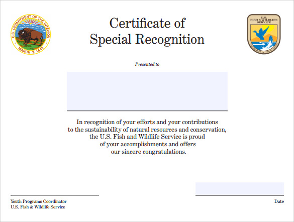 Sample Certificate of Recognition Template 21 Documents in PDF – Printable Certificate of Recognition
