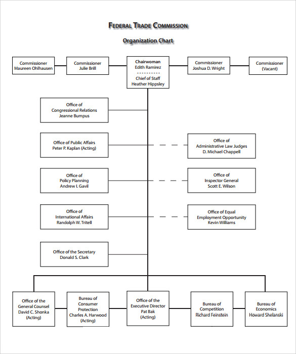 sample blank organizational chart 11 documents in pdf