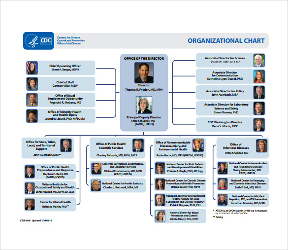 sample blank organizational chart