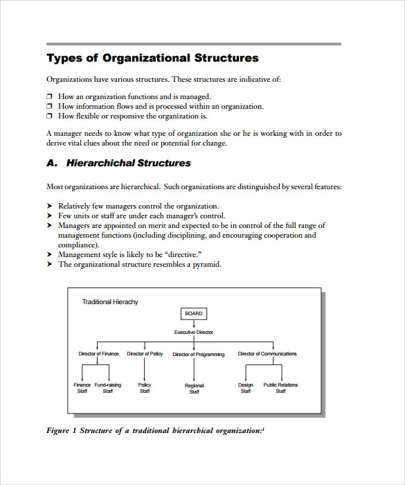Sample Blank Organizational Chart 8 Documents in PDF – Blank Organizational Chart