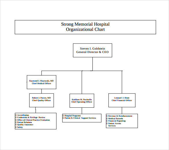 Sample Hospital Organizational Chart   Documents In Pdf