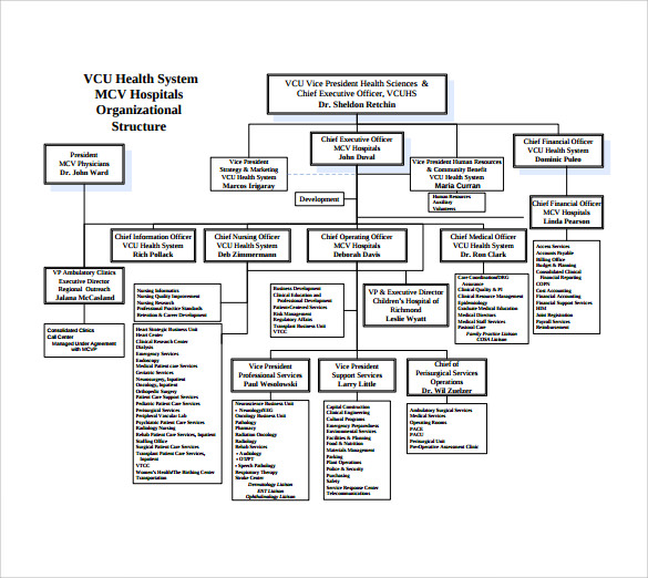 Sample Hospital Organizational Chart - 8+ Documents In Pdf