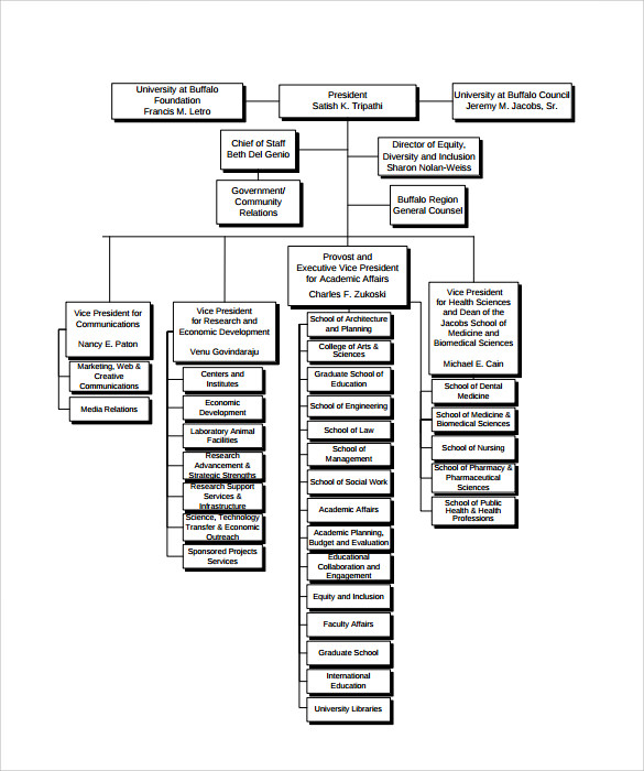 Sample Business Organizational Chart   Documents In Pdf