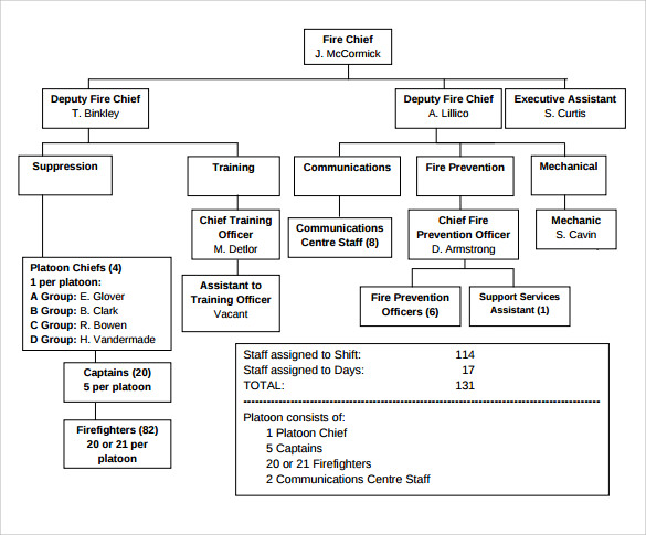 13 Sample Fire Department Organizational Charts