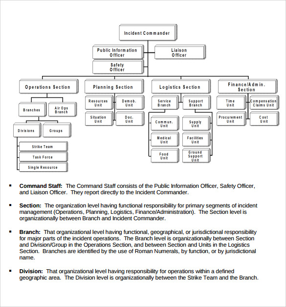 Sample Ics Organizational Chart   Documents In Pdf