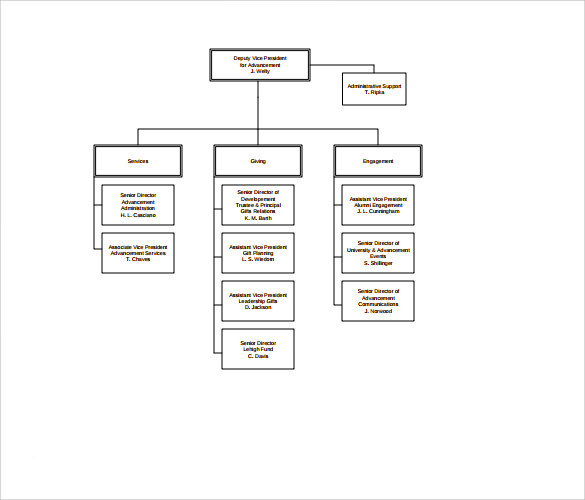 6 non profit organizational charts sample templates