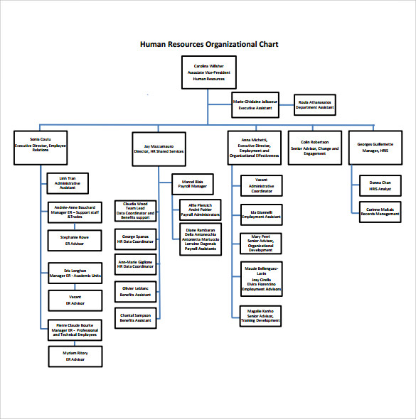 10 sample human resources organizational charts sample