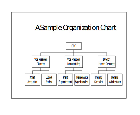 Sample Basic Organization Chart   Documents In Word Pdf