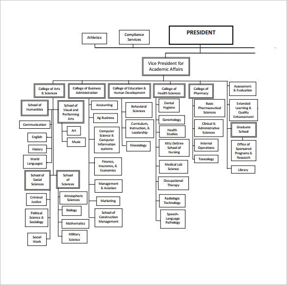 ulm organization chart