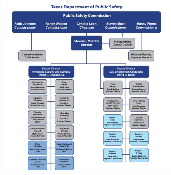 organization chart to download