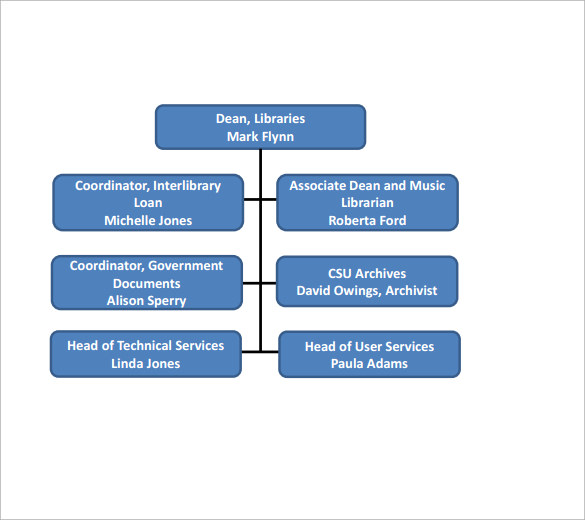 csu organization chart