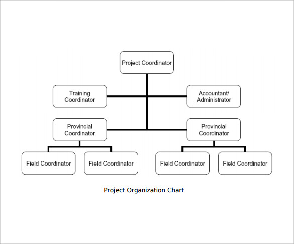 12 project organization chart templates to download for Organizational charts templates for word