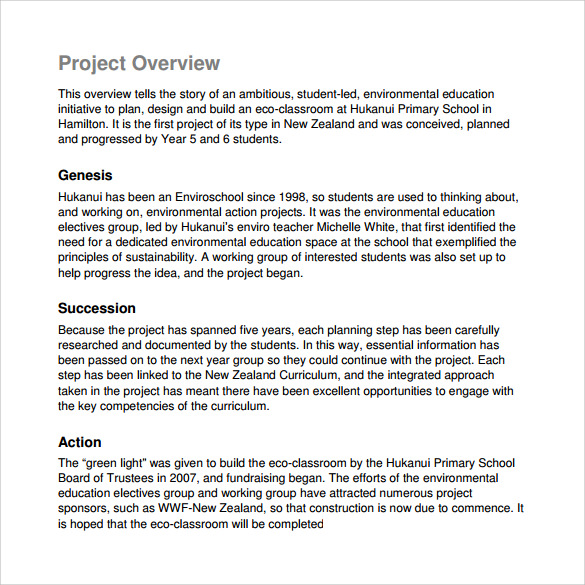 Sample Project Overview Template   Free Documents In Pdf Word