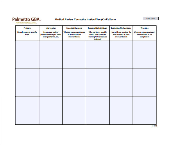 hospital action plan template - sample corrective action plan template 9 documents in