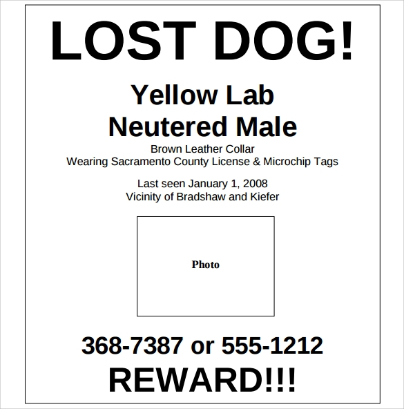 Lost Dog Flyer Template   Download Documents In Vector Eps Psd