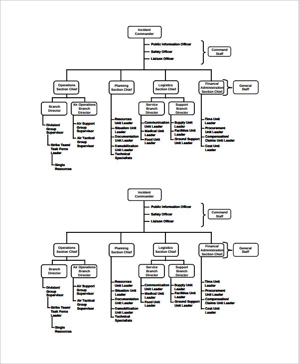 business ics organization chart template