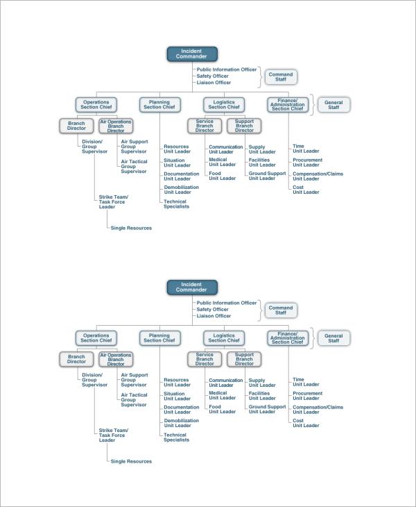 ics organizational chart animal shelter template1