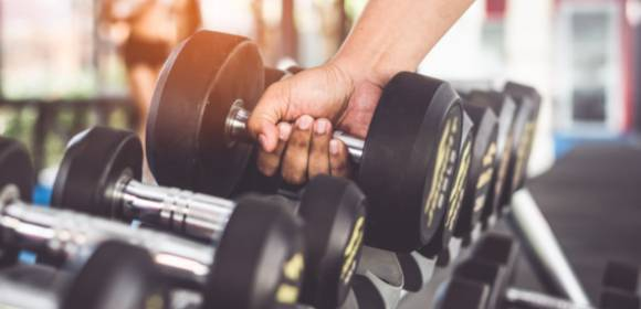 9 Gym Contract Templates Pages Word Docs