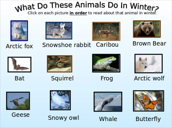 winter presentation template