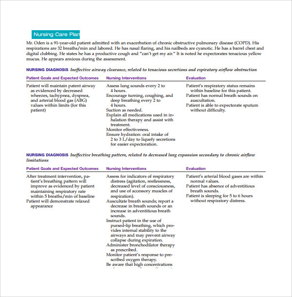 8 nursing care plan templates sample templates for Nursing care plan format template