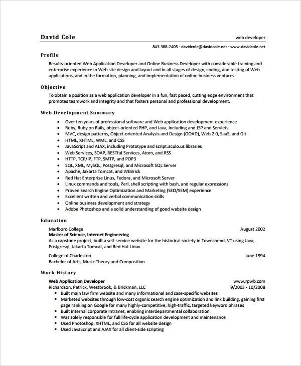 web application developer resume java software cv example template sample