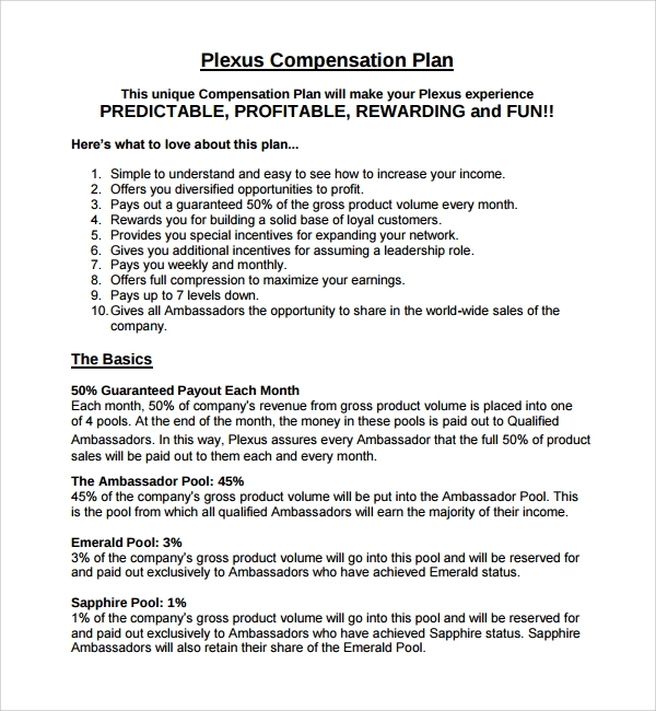compensation plan template%ef%bb%bf