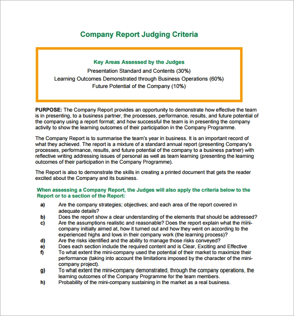 mini company report