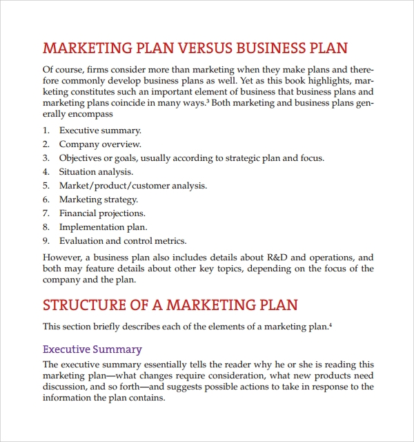 Sample Product Plan Template 8 Free Documents in PDF Word – Product Plan Template