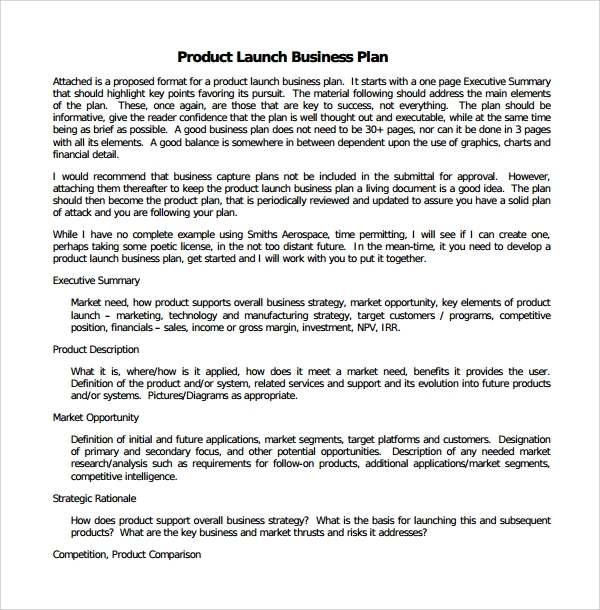 Sample Product Plan Template   Free Documents In Pdf Word