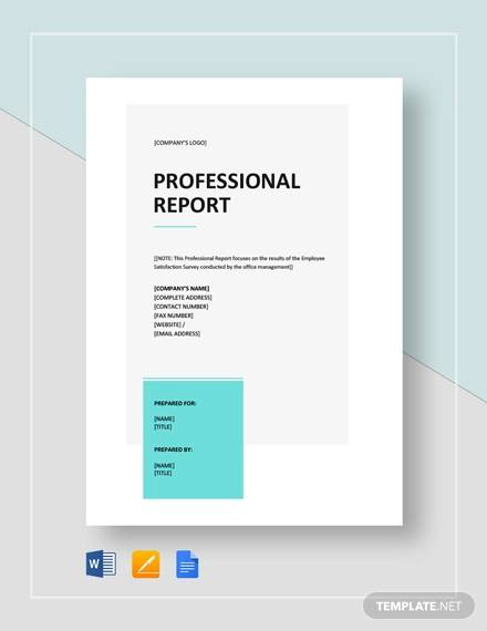 FREE 22+ Sample Professional Report Templates in PDF | MS Word