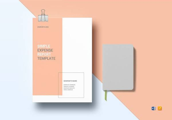 sample professional report template