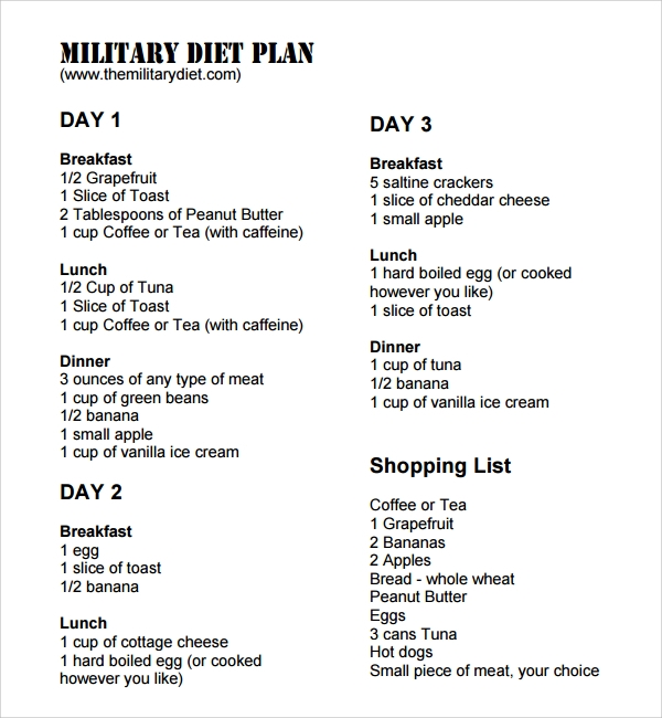 Sample Diet Plan Template - 9+ Free Documents In Pdf, Word