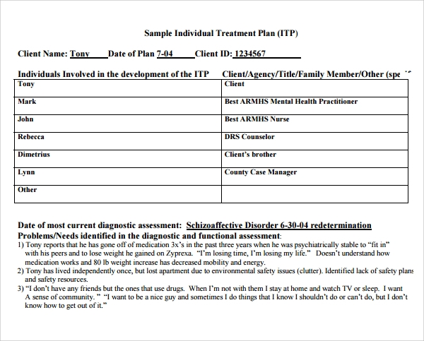 8 treatment plan templates sample templates for Individual health care plan template