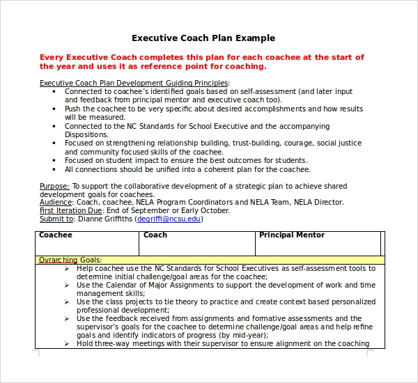 Executive Coaching Plan Template