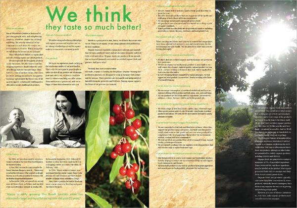 macro food brochure