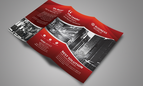 business promotional brochure