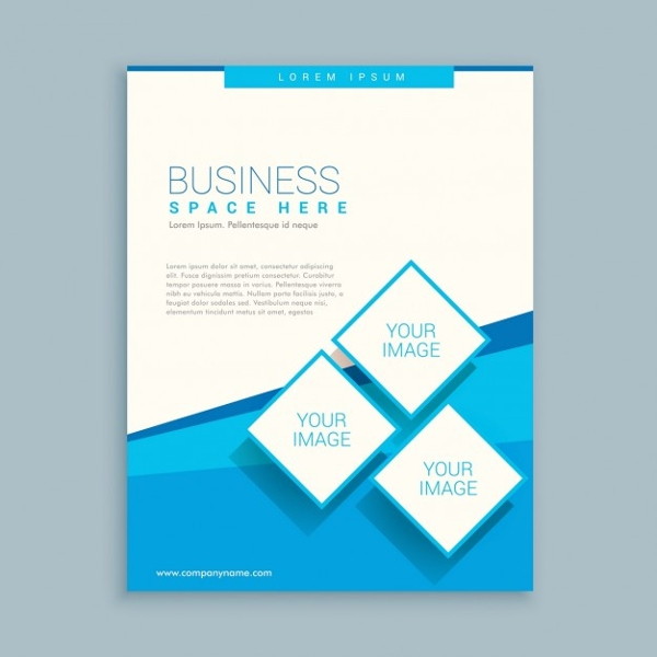 exclusive free promotional brochure