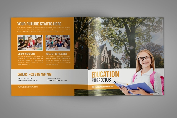 clean college brochure