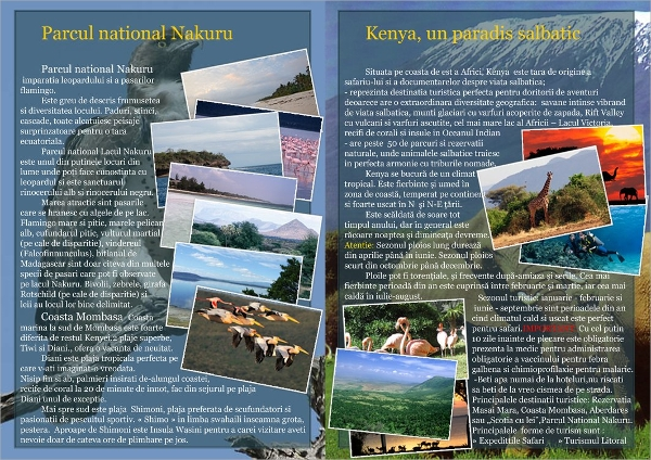 brochure for tourism