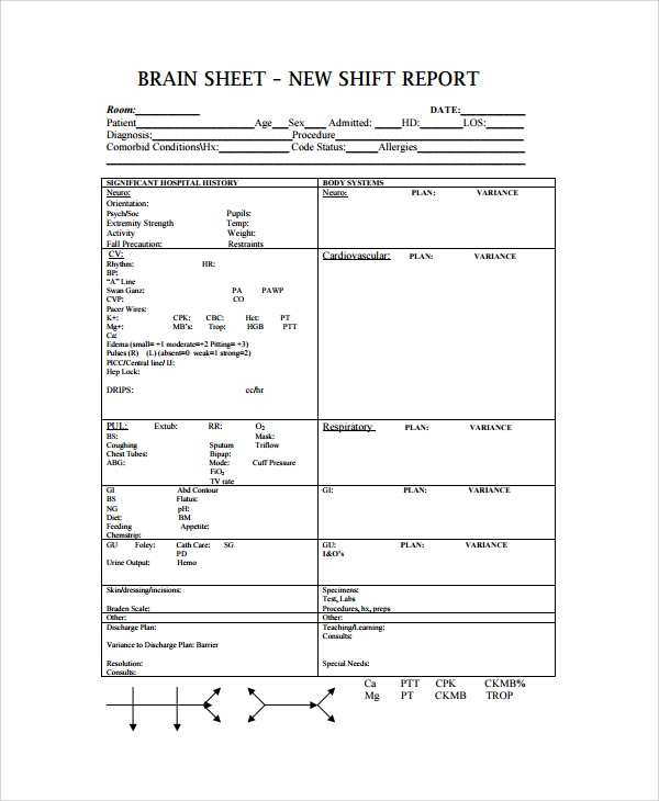 Sample Shift Report Template   Free Documents Download In Word Pdf