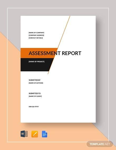 assesment report sample