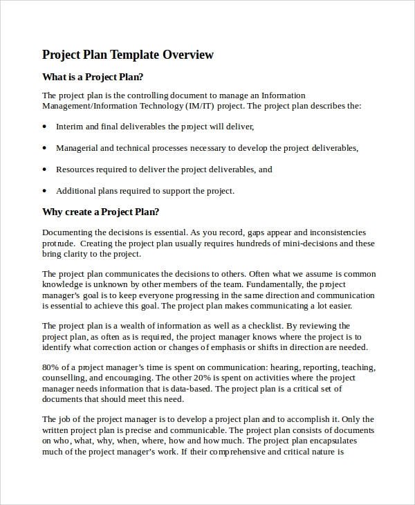 IT Project Plan Document Template  Project Plan Word Template